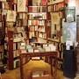 Ο περιηγητής των βιβλιοπωλείων