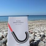 αιδημοσύνη και αξιοπρέπεια - Dag Solstad